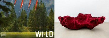 "MAISON ET OBJET PARIS 2016 ANNOUNCES ""WILD"" AS THEME"