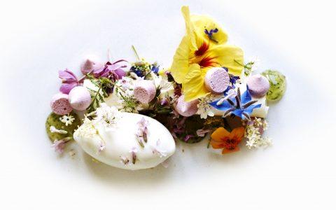10 restaurants that are in the top 50 best restaurants in the world 10 Restaurants That Are In The Top 50 Best Restaurants In The World original 001 noma flowers dessert finedininglovers 480x300