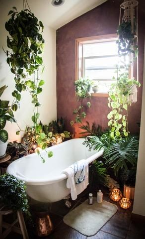 The next big interior trend: Bathroom with plants The next big interior trend: Bathroom with plants 70445ff8a183c19bb59fccb71836415b e1495810575586