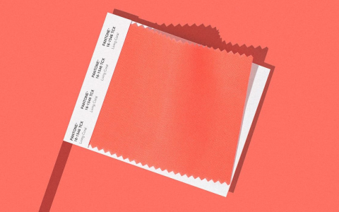 "the color of 2019 is chosen: it is the The Color of 2019 is Chosen: It is The ""Pantone 16-1546"", Also Known as ""Living Coral"" Screen Shot 2018 12 06 at 9"