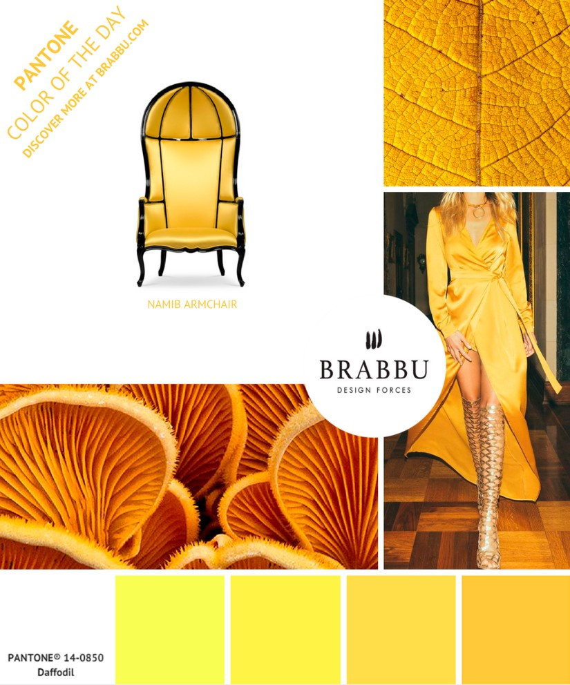 colors will inspire you in 2019 What Colors Will Inspire You In 2019? Brabbu Tells You Everything! TRENDING PANTONE COLORS FOR 2019 2