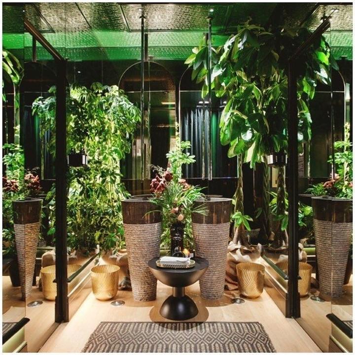 Restaurant bathroom whit plants bathroom plants Bathroom Plants: 5 Bathroom Projects Ideas 156115338 278354846982961 5838970879595048581 n